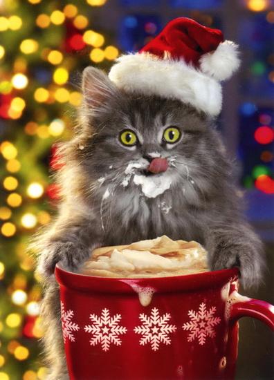 Chat de Noel avec tasse de chocolat chaud